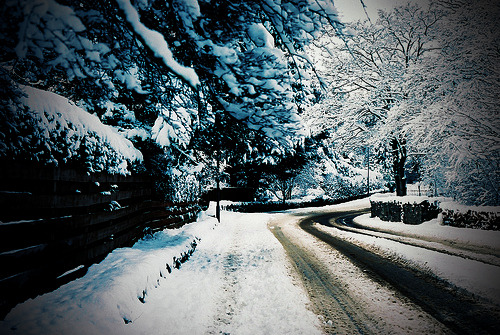 -horrocrux:  Vanishing Winter Road (by BazzaStraße)