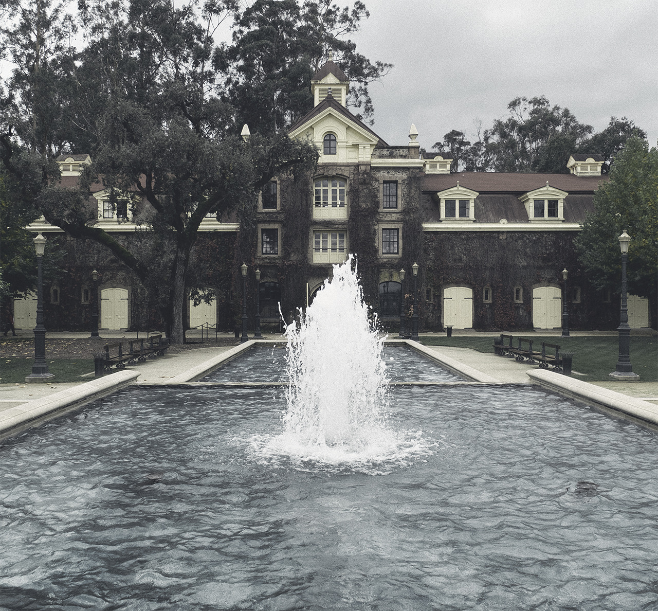 foggy fountain (napa valley)