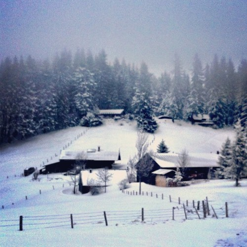 #Winter #hiking in #Bavaria - too bad the hut was closed.