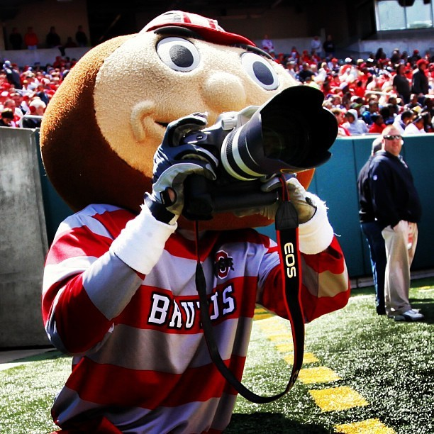 Brutus is gunning for my job