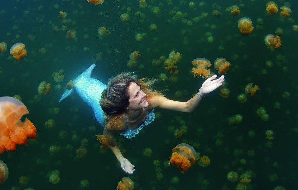 "by-way-of-the-green-line:  ""Meet the real life mermaid who swims with jellyfish and can hold her breath under water for up to five minutes Linden Wolbert travels the world as a full time professional mermaid and uses her custom-made 6ft tail to propel her through the water. The 32-year-old freediver and model can swim to depths of 115ft and uses her skills to promote ocean conservation and education. Linden, from Los Angeles, California, said: 'I grew up as a water baby. My parents are both competitive swimmers. 'I always looked forward to going to the ocean for our summer vacation. I had a magnetism to the water. 'I've kind of always been a freediver but didn't realise the sport existed until ten years ago. Shortly thereafter, I when began training. 'Free diving is 70 per cent psychological. You have to be very calm and at ease in the water.'"""