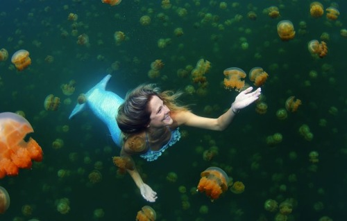 "lasfloresdemayo:  by-way-of-the-green-line:  ""Meet the real life mermaid who swims with jellyfish and can hold her breath under water for up to five minutes Linden Wolbert travels the world as a full time professional mermaid and uses her custom-made 6ft tail to propel her through the water. The 32-year-old freediver and model can swim to depths of 115ft and uses her skills to promote ocean conservation and education. Linden, from Los Angeles, California, said: 'I grew up as a water baby. My parents are both competitive swimmers. 'I always looked forward to going to the ocean for our summer vacation. I had a magnetism to the water. 'I've kind of always been a freediver but didn't realise the sport existed until ten years ago. Shortly thereafter, I when began training. 'Free diving is 70 per cent psychological. You have to be very calm and at ease in the water.'""  This is unreal right"