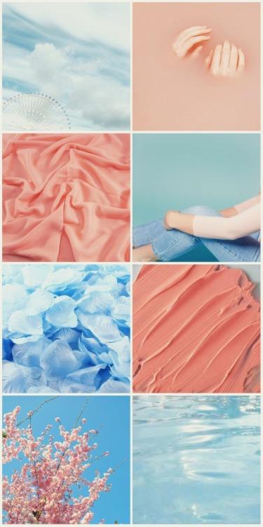 moodboard aesthetics name moodboard peachy blue textures flowers art