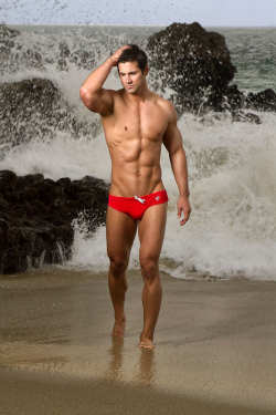 I LOVE RED SPEEDOS! Nothing in this world is better than a guy in a red speedo!View Post