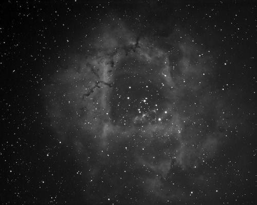 Rosette nebula (OIII) by StormLV on Flickr.