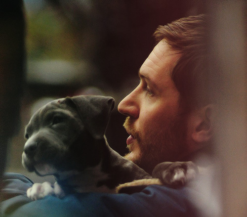 anchorthisheart:  scruffy beard + puppy = perfect  Tom Hardy holding a puppy.