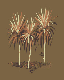 Little palms