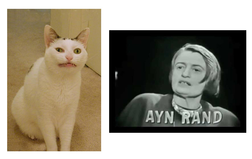 thejogging:  Ayn Rand and a Cat, 2013 Image ☯