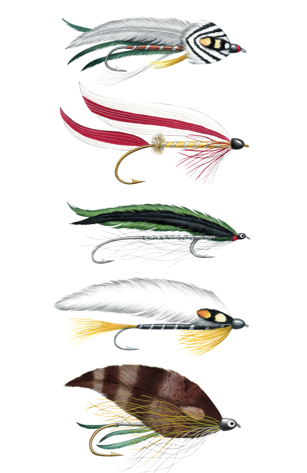 Just added a few fly fishing lures, painted for Down East Magazine to my Etsy shop. 5 X 7.5 inches. $65- each. Could make a great fathers day gift, for that special angler in your life. https://jadafitch.etsy.com/ #fly#fly fishing#fly lure#lure#fishing#fishing fure#feather#art#illustration#watercolor#jada fitch#Down East#DownEast #Down East Magazine #illustrator#Maine#artist#angler#fathers day#gift idea#fisherman#flylure#black ghost#gray ghost#paramanchee belle#bingham special#nine-three#lures#fishing lures
