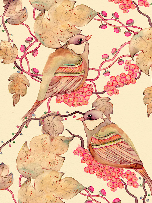 houseoffallingleaves:  birds!