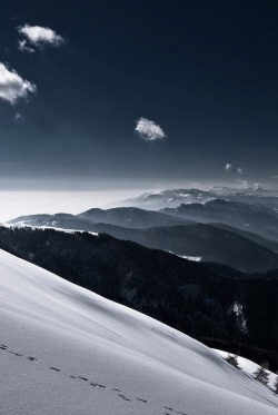 0rient-express:  white cloud (and its shadow…) (by Carlo Zustovi).