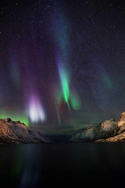 galaxyshmalaxy:  aurora and stars (by John A.Hemmingsen)