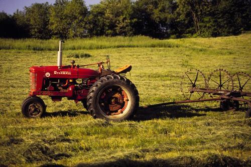 imnotracistimitalian:  Farmall M