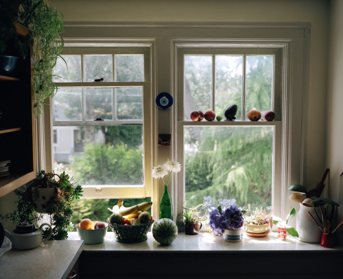 alexihobbs:  The windowsill at Ali and Sinead'sJuly 2012