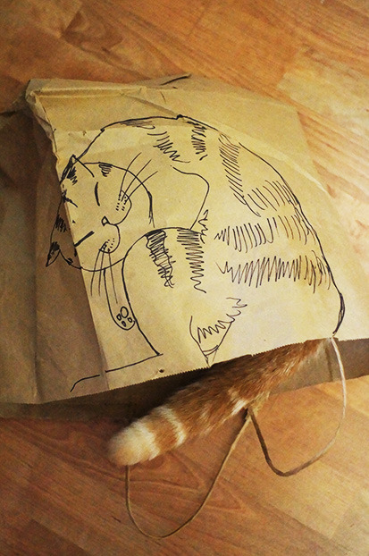 waffles-the-cat:  There's something realistic about this paper bag…