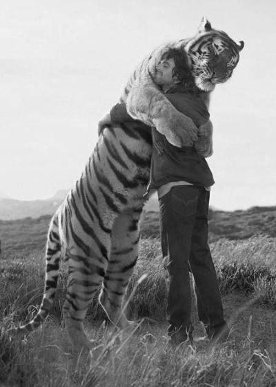 carlitoallday:  Tiger Hug