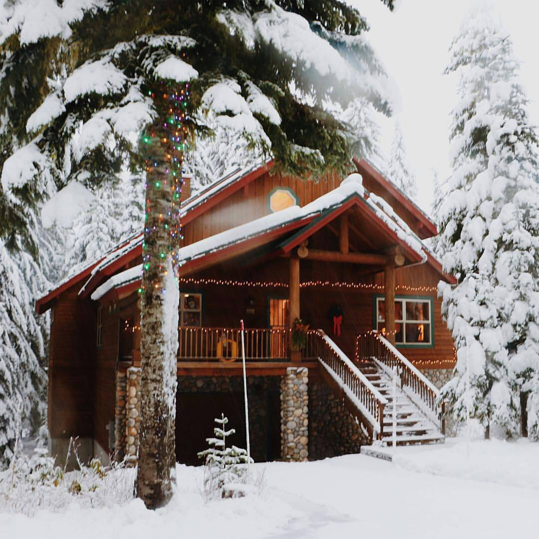 """thecabinchronicles: """"Dreaming of a white Christmas in Government Camp, Oregon. Pour us another cup of cheer! P: @bethkellmer #thecabinchronicles """""""