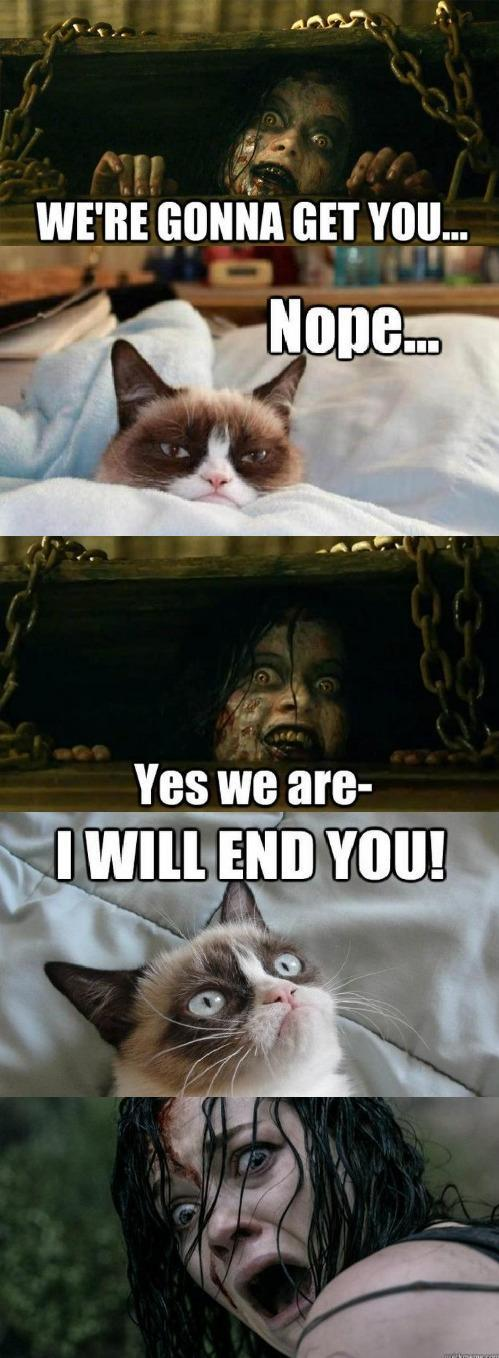 caboosealmighty:  Grumpy Cat in Evil Dead