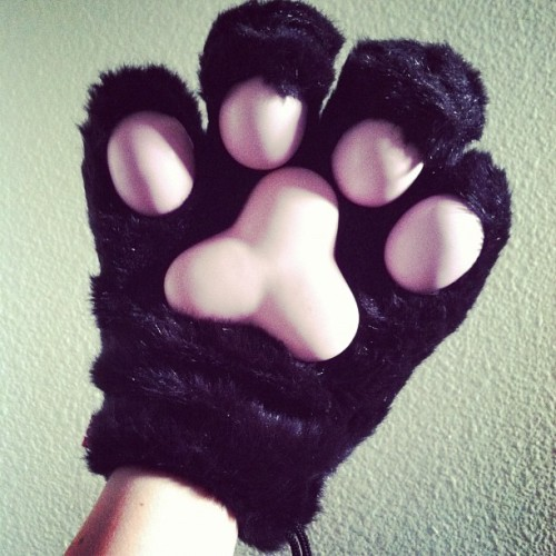 Kitty Paws ❤ #kitty #kittypaws #paw #paws #cosplay #catpaw #cat #black #kawaii #cute