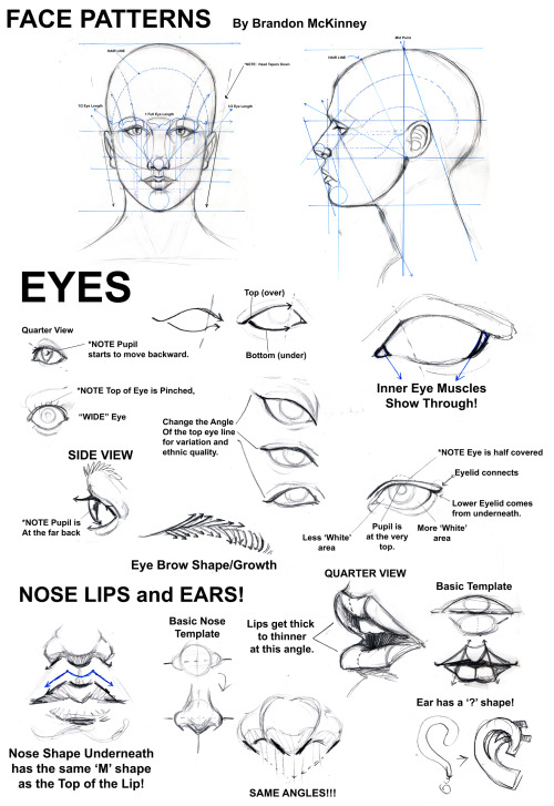 "museofanartist:  Face Patterns Tutorial by Snigom Some of the basics everybody should learn in their first art class. Once you know this it becomes so much easier to draw photorealistic faces as well as ""create"" your own faces. Good luck!"
