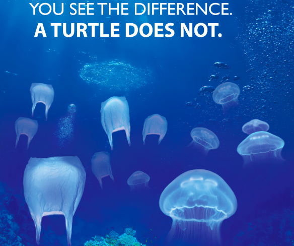 Plastic bags facts - Nature Ocean Marine Life Important Environment Plastic