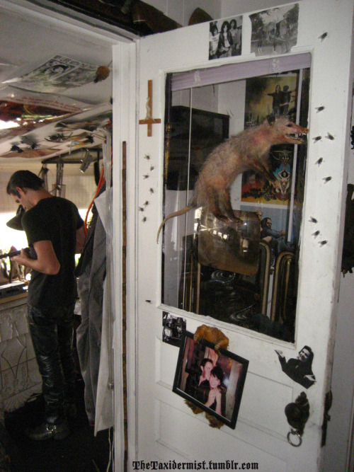 thetaxidermist:  Ryan in the shop…  My fucking forever dream date….