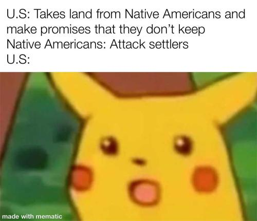 What did the US expect?(via) #dailyhistorymemes#historymemes#historymeme#history#meme#memes#fun#funny