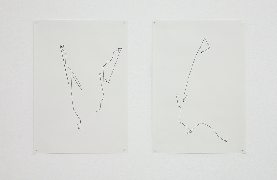 Anne Guro LarsmonUntitled (Retracing Darwin, The power of plant movements 1880), 2013. Ink on paper. 12 in x 17 in.