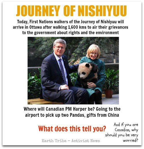 "The Journey of Nishiyuu arrives in Ottawa today — the completion of an epic journey of Indigenous youth that started in the community of Whapmagoostui on Hudson Bay in northern Quebec.  Hundreds of supporters, Indigenous and non-Indigenous alike, will be on hand today in Ottawa to greet them. Members of the labour movement and other civil society groups will be there to show their support. Some Members of Parliament, from opposition parties, will be there when the group arrives on Parliament Hill shortly after 1p.m. EST today.  rabble.ca's parliamentary reporter Karl Nerenberg will be there on the Hill to report on this historic event.  Stephen Harper, meanwhile, will be in Toronto, rolling out the right carpet for two pandas arriving on loan to Canadian zoos from China.  In other words, on this historic day where Indigenous issues should have the full attention of the national media and politicians, Harper has skipped town, in order to preside over the carefully scripted culmination of his ""panda diplomacy"" with the government of China….  read full article here… rabble.ca"