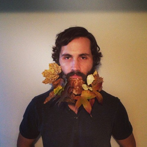 Another #flowerbeard by @sarahwinward although technically a #foliagebeard