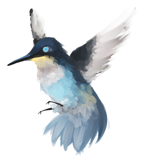 30min for a hummingbird-leon. I really forgot how much i loved drawing birds u-u