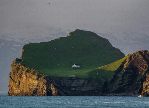 ironm0on:   lil-island: bjork's home in iceland  vay aQ