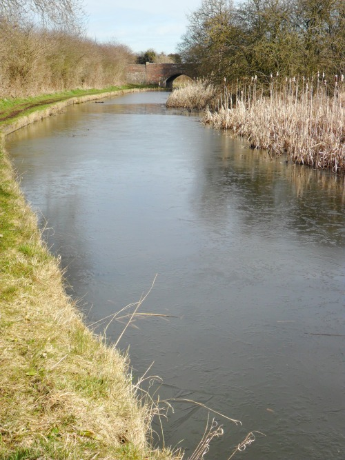 Frozen canal at Winterly Bridge, Aldridge, Walsall