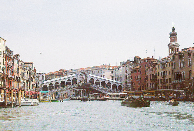 | ♕ |  Rialto Bridge - Grand Canal, Venice  | by © Carrie Davis