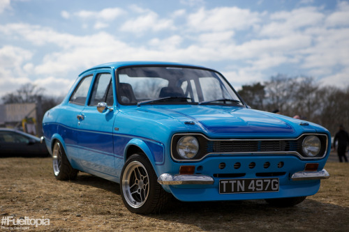 Bluebird Starring: Ford Escort (by Dan Fegent)
