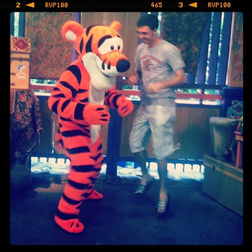 Tigger today was so bouncy today, but it was so good to see him. I can't wait till I become personal friends with him #tigger