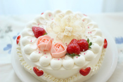 food cake delicious Strawberry pastry bakery