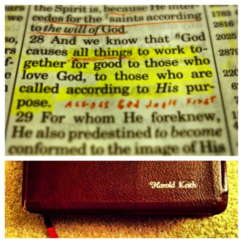 Opened up my grandpa's bible and found this verse highlighted. #Romans #Chapter8 #Verse28 Sometimes all you need is your father's encouragement, your grandfather's guidance, and the Almighty Father's Word. #blessed