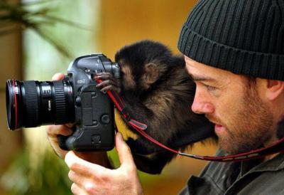 Monkey Cam Via