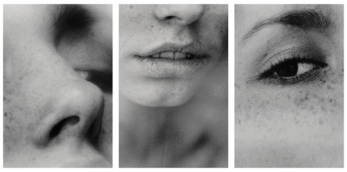 christaufer:  face studies by akimuby on Flickr.