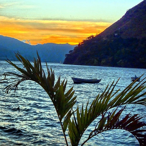Beyond the palm, a boat awaits. (at Santa Cruz, Lake Atitlan, Guatemala.)
