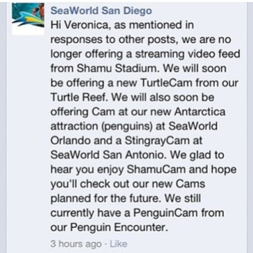 freedomforwhales:  It's official. Seaworld has closed down their Shamu Cam. Maybe because of all of the evidence of aggression, depression, etc that anti caps use from this cam, or because of Kasatkas baby, or because of the fact they they're trying to bring in waterworks again (this one is unlikely, UV tanks are rarely used for waterworks, and SW waterworks haven't progressed past the medical pool yet). Whatever the reason, Seaworld is hiding something, but what else is new?  WOW…Go figure.  :/