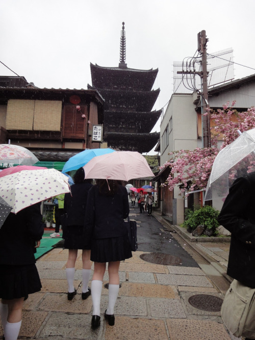 girl people life japan japanese women street rain castle road schoolgirl japanese girl rainy day