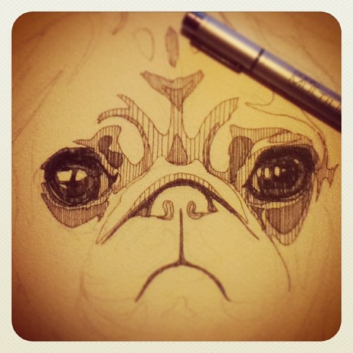 En proceso / in progress #dibujo #drawing #pug #perro #lustrelustre #lustre
