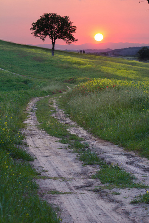 Tuscany sunset - Italy