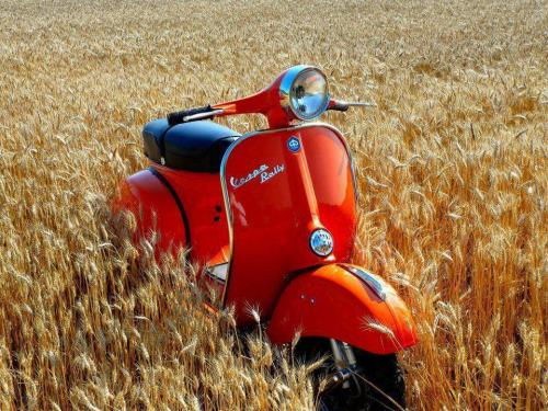beautyonwheels:  Vespa Rally  .