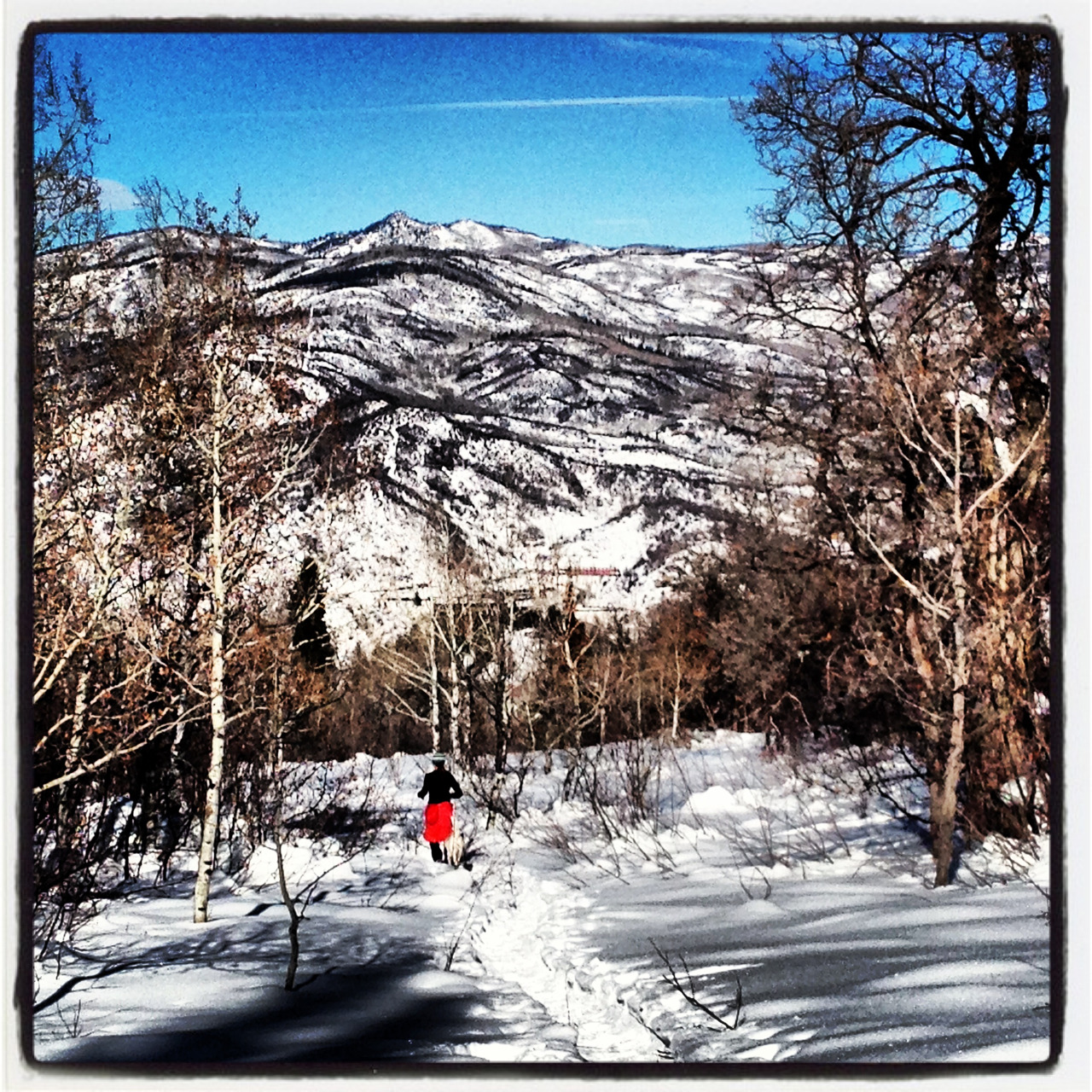 A lunchtime run on a beautiful, bluebird day.