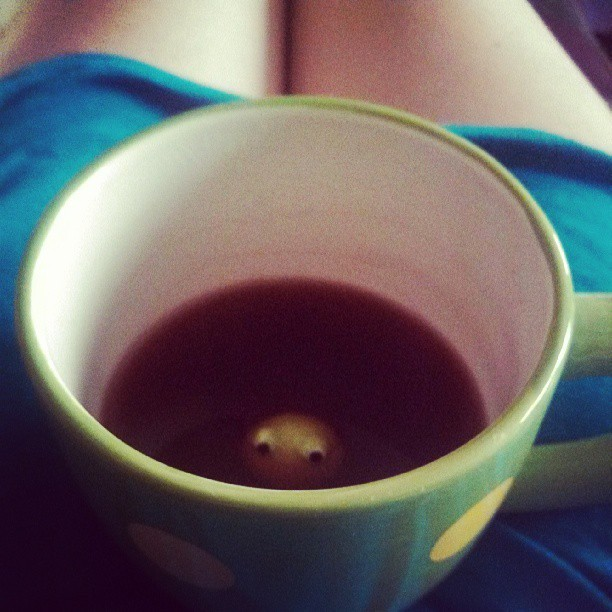 Always going to be one of my favorite cups! #frog #peekaboo #raspberry #zinger #tea #yum