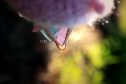 ♥ Love is everywhere… by Voodoolady ♎ on Flickr.