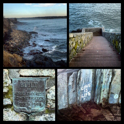 The cliff walk in Newport, RI :)